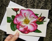 Pink and White Rose Note Card - Handcut Botanic Garden Bloom, Blank, All Occasions