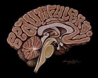 Beautiful Brain