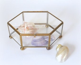Glass display box, brass and glass trinket box
