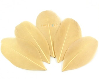 50 Pieces Light Brown Feather 5-8cm (YM93)