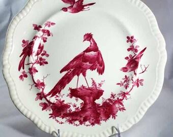 Copeland Spode Black Bird Dinner Plates Rare Fuschia!
