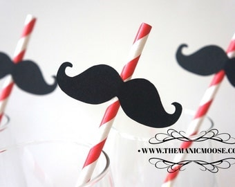 Set of 10 RED Striped Mustache Straw Photo Props - Mustaches on RED Striped Paper Straws