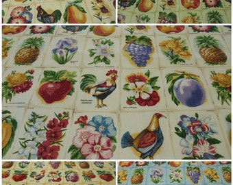 Lee Jofa County Fair- Glazed Print Cotton Fabric Remnant- Novelty - pc 25inx30in
