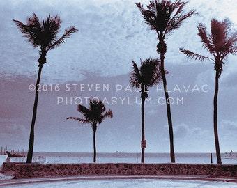 Vintage South Beach Miami 'Five Palms Silhouette' Tropical Art Deco Photograph