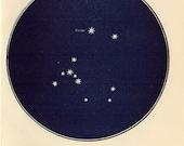 Vintage 1920 Edwardian CANIS MAJOR Map 15 Stars astronomy print star chart zodiac constellations Celestial Maps