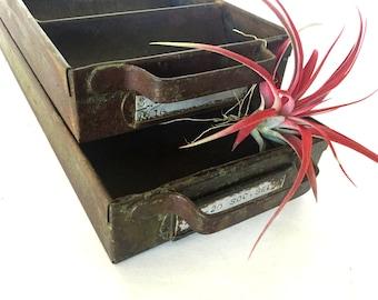 Vintage galvanized  farmhouse drawer / set of 2