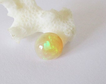 Ethiopian Welo Hydrophane  Opal 8mm Round Cabochon 1.00cts