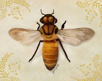 Golden Bee (Large mounted print)
