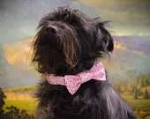 Buckle Dog Collar and bow set, Mazzy, pink with hearts, size medium or large