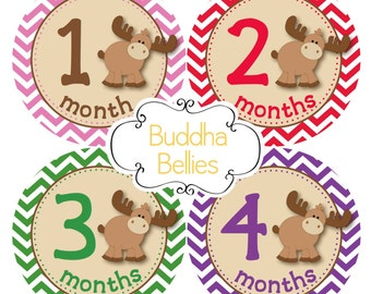 Baby Girl Moose Monthly Stickers Moose Nursery Gift Woodland Month Stickers Monthly Girl Baby Decals Baby Stickers