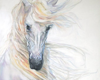Original Oil Painting: White Andalusian horse head