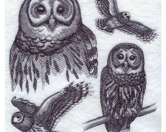 Custom Embroidered Barred Owl Sweatshirt S-3XL