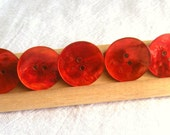 5 Red Shell Buttons,23 mm, Shiny,  2 hole, Wafer Style, Irregular Curve and Surface, Natural Shell Back, Bright Red New Buttons by Dill
