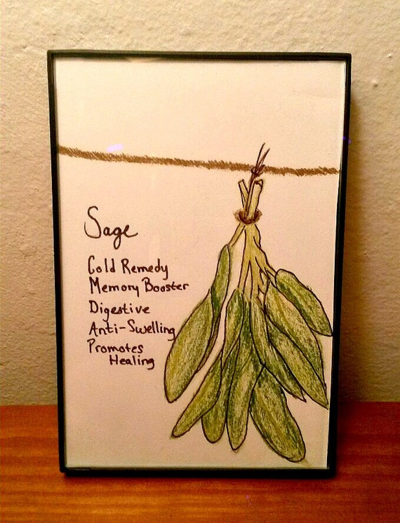 Hearttolifedesigns Framed Drawing Hanging Herbs