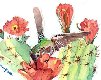 ACEO Limited Edition 1/25 -Hummingbird and cactus flower, Summer Anna's garden, Gift idea for bird lovers, Bird art print