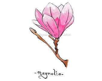 Magnolia - Print of an Original Ink and Watercolor Illustration - Ink & Watercolor - Floral, Magnolia Print, Flower