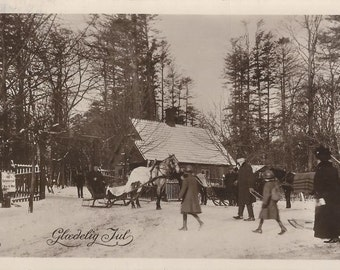 Danish Christmas - Vintage 1920s Horses, Sleighs and People Real Photo Postcard