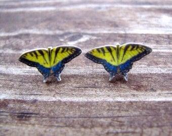 Tiger swallowtail butterfly earrings butterfly jewelry insect earrings wearable art yellow butterfly bug