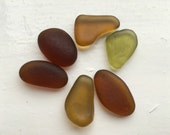 Shades of champagne: A neutral mix of brown and gold sea glass. Smooth and well frosted