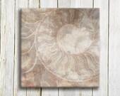 Nautical Shell Art Print - Natural Shell Art print - bedroom decor - wedding gift