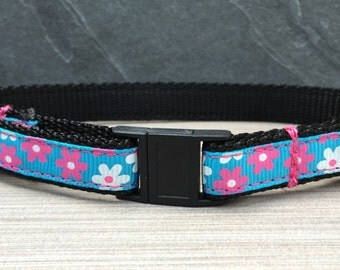 """Cat Collar - Pink and White Flowers on Blue Ribbon on 1/2"""" black nylon webbing - with break away safety clasp and optional jingle bell -"""