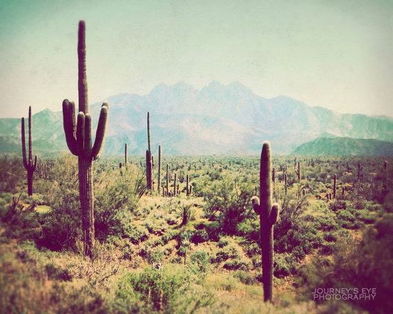 Wild Wild West - Southwest photograph, Western decor, desert landscape, Arizona, vintage, retro, fine art photo