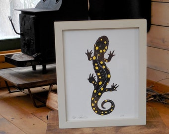 Spotted Salamander - framed 8 x 10 inch limited edition print by Matt Patterson