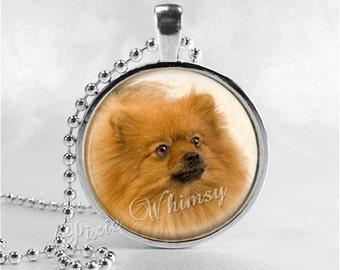 POMERANIAN Necklace, Pomeranian Pendant, Pomeranian Jewelry, Dog Breed Jewelry, Pom, Dog Necklace, Pomeranian, Glass Photo Art Necklace