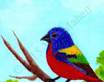 Songbird, Red blue yellow bird, Hand painted, original,watercolor songbird,colorful bird,songbird art,wild birds,painted bunting, Item #PBO1