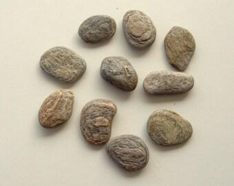 4 grey flat pebblesbeach stonescraft suppliesbeach for Flat stones for crafts