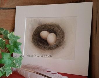 Framed Original 'Nest'