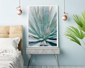 Botanical photography, blue agave, agave art, southwest decor, modern botanical, nature photography, abstract, blue green, large wall art