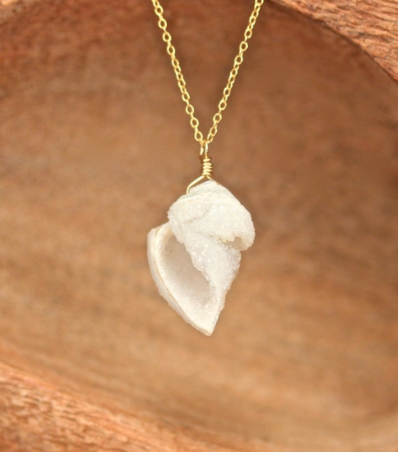 Druzy shell necklace - crystal necklace - druzy necklace - fossil - raw crystal - a 18 carat fossilized sea shell on a 14k gold filled chain