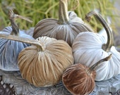 Neutral Silk Velvet Pumpkins with Real Stems