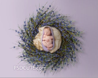 Digital Backdrop Newborn PROP Flower PURPLE Wreath Nest Rose Twig Branch - CPZ124