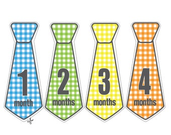 Baby Tie, Monthly Onesie Stickers,Milestone Stickers,  Baby Shower, Gingham, Mason
