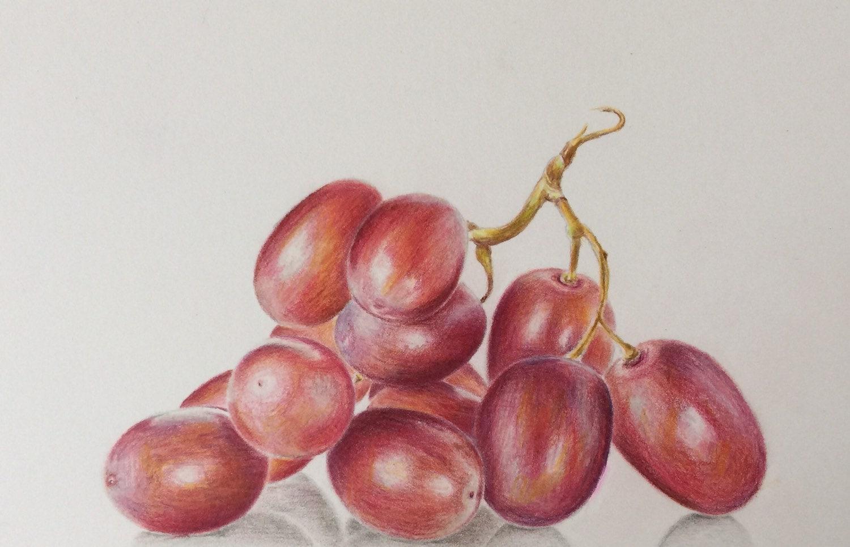 Colored Pencil Grapes Drawing  Original Art  Still Life Painting  Grapes  Painting