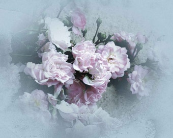 Old Fashioned Pink Roses Photo, Baby Blue Background, Shabby Chic Photography, Textured Photos