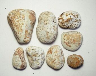 8 White Beach Stones with Iron, Rust & Cream Sea Stones, Natural Garden Decor, Succulent Aquarium Supply