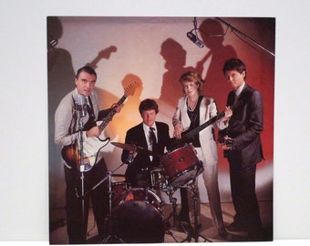 Talking Heads Band Poster Vintage Wild Wild Life 2 Sided Record Store Display Cardboard Flat David Byrne Tina Weymouth Sire Band Photograph