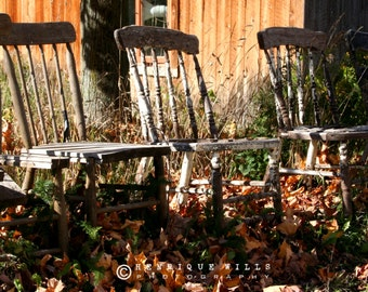 Fine Art Print, Antique Chairs, Rustic Decor, Fall Colors, Brown, Orange, Green.