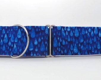 Royal Rain Dog Collar (Martingale, Buckle, or Tag)