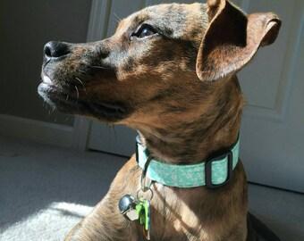 Seafoam Dog Collar, Mint Dog Collar, Designer Dog Accessories, Pet Accessories, Adjustable Collar, Fabric Dog Collar, Plastic Nickel Brass