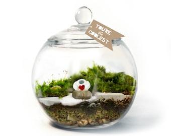 Moss Terrarium // Yeti Love