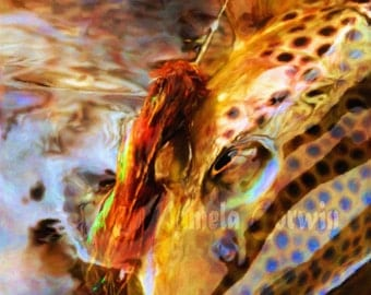 "Brown trout with fly up close painting print: 16x16"" square print of trout with wet fly"
