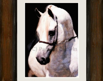 "White arabian stallion painting print: arabian horse art print 16x20"" canvas arabian show horse on canvas"
