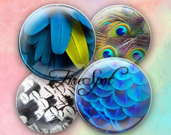 Colorful feather plumage - Digital Collage Sheet 1.5 inch,1.25 inch,30mm,1 inch,25mm circle Glass Pendants,Bottlecaps,Scrapbooking