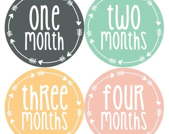 Baby Girl Month Stickers Monthly Baby Sticker Monthly Baby Stickers Baby Month Stickers Arrows Milestone Stickers Photo Stickers 1025