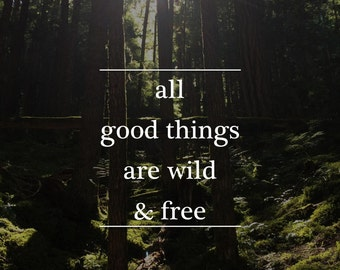 All Good Thing are Wild & Free Print