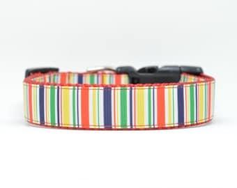 Striped Dog Collar - Colorful dog collar